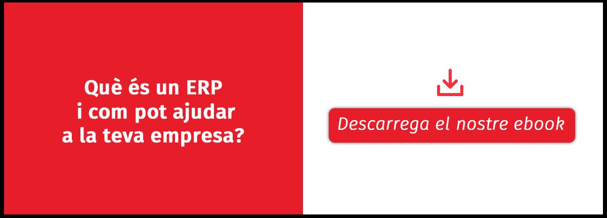 guia elegir ERP