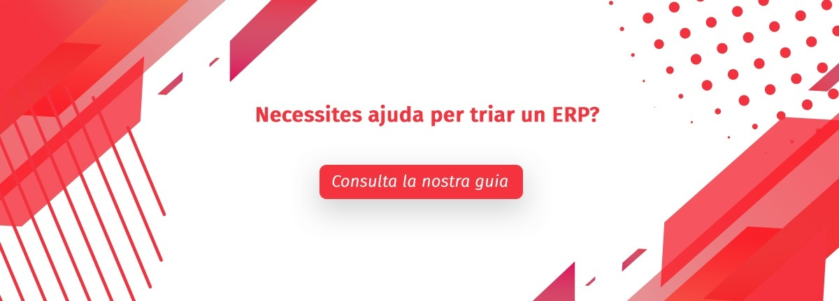 Ebook elegir ERP