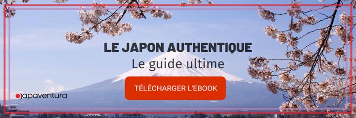 japFR ebook