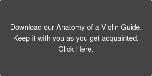 Download our Anatomy of a Violin Guide.  Keep it with you as you get acquainted. Click Here.