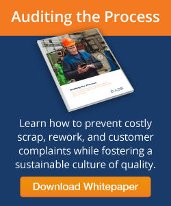 Auditing the Process Whitepaper