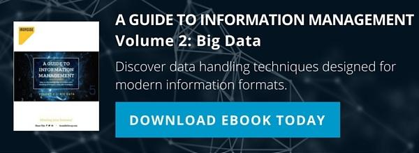 A Guide to Information Management Vol. 2: Big Data Download