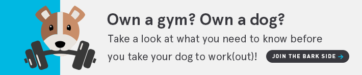Own a gym? Own a dog? Take a look at what you need to know before your take your dog to work(out)