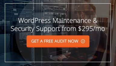 Managed WordPress Support & Monitoring