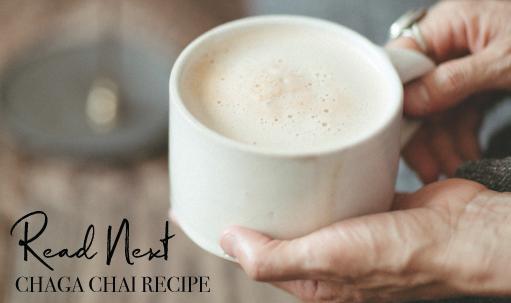 Read Next: Chaga Chai Recipe