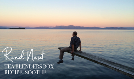 Read Next Tea Blenders Box - Soothe