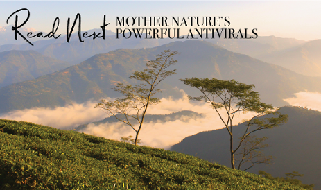 Read-Next-Mother-Natures-Powerful-Antivirals