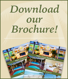 Download our Hotel at Venice Beach Brochure