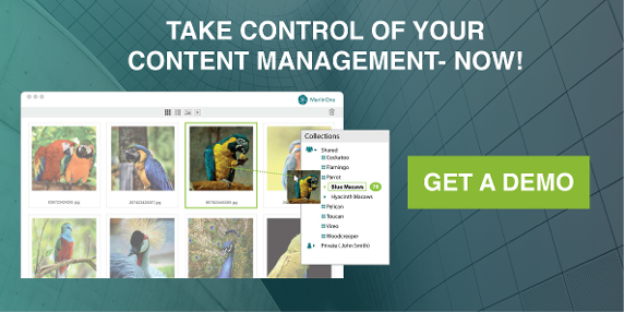 MerlinOne CTA Take Control of your Content Management Now Get a Demo with product image