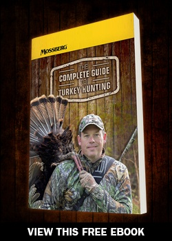 The Complete Guide to Turkey Hunting