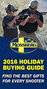 2016 Holiday Buying Guide