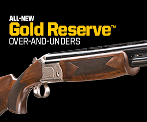 All-New Gold Reserve