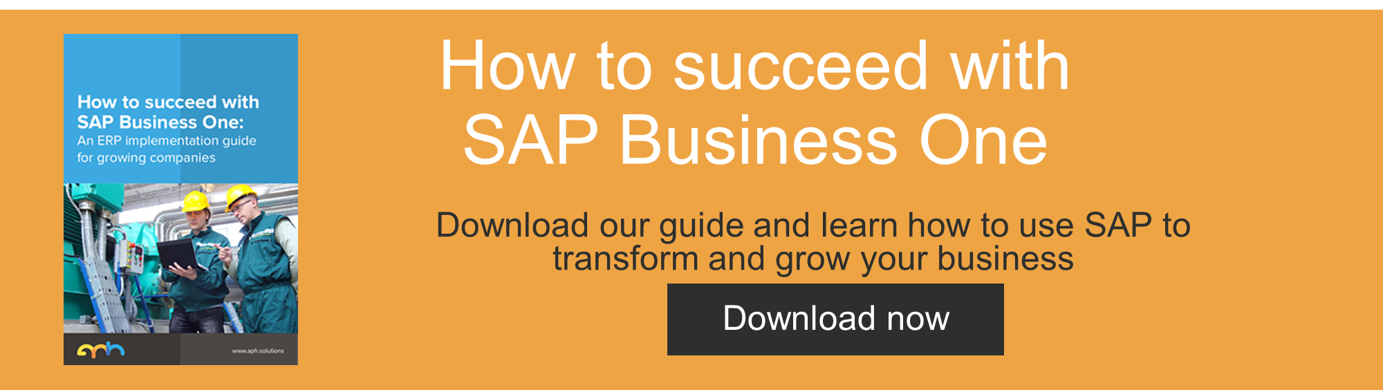 How to succeed with SAP Business One