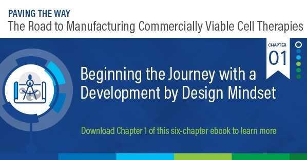 Beginning the Journey with a Development by Design Mindset
