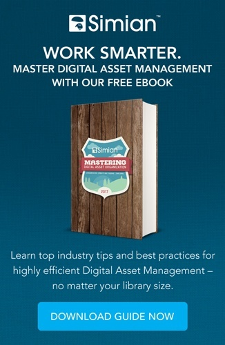 Mastering Digital Asset Organization Free Ebook Download