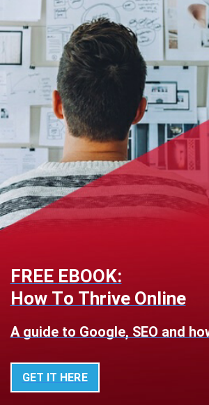 FREE EBOOK: How To Thrive Online  A guide to Google, SEO and how to get the website you need  GET IT HERE  <>