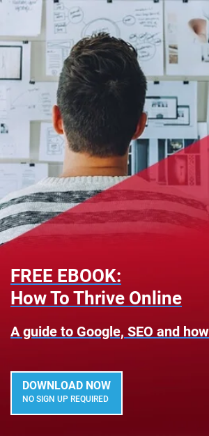 FREE EBOOK: How To Thrive Online  A guide to Google, SEO and how to get the website you need  GET IT HERE