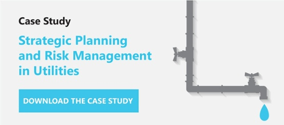 Case Study Strategic Planning and Risk Management