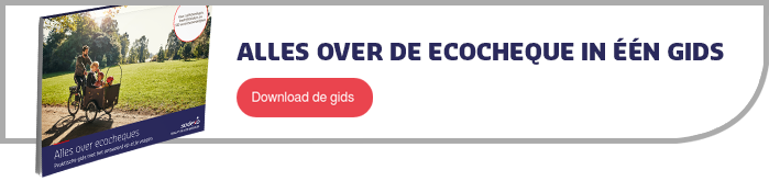 Alles over de ecocheque in één gids