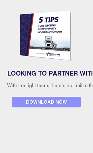 Looking to partner with a 3rd-party logistics provider? With the right team, there's no limit to the growth you can achieve! Read our  5 tips for selecting a 3PL here. Download Now