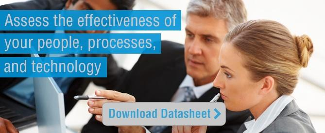 Download our Security Assessment Datasheet