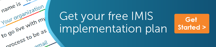 Get your free IMIS implementation plan