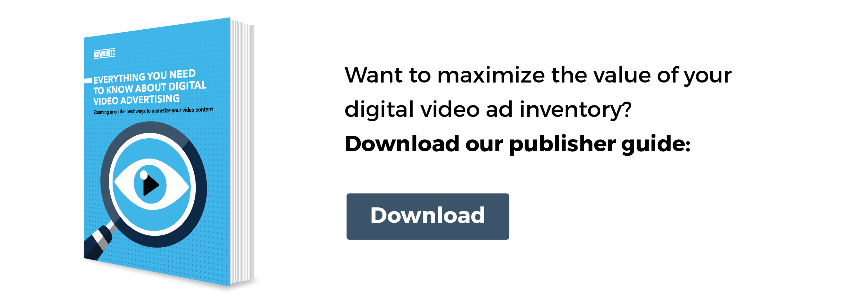 Want to maximize the value of your digital video ad inventory? Download our publisher guide!