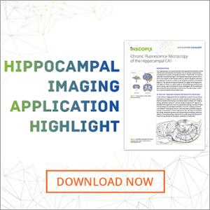 Hippocampal Imaging Application Highlight