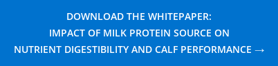 DOWNLOAD THE WHITEPAPER:  IMPACT OF MILK PROTEIN SOURCE ON NUTRIENT DIGESTIBILITY AND CALF PERFORMANCE →