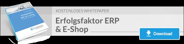 Erfolgsfaktor ERP & E-Shop - 12 Tipps vom Experten: mit E-Commerce zum Erfolg