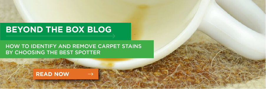 How to Identify and Remove Carpet Stains