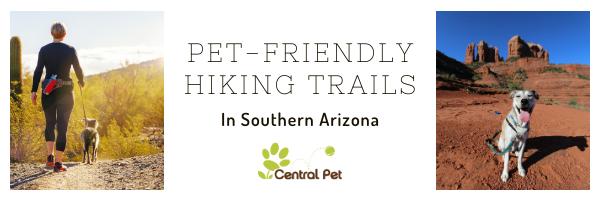 Pet Friendly Hiking Trails in Southern Arizona