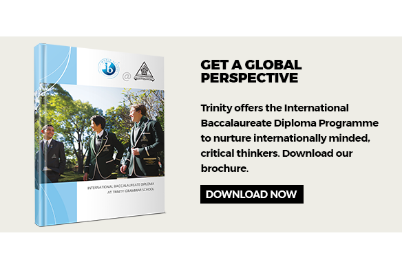 IB Diploma brochure download