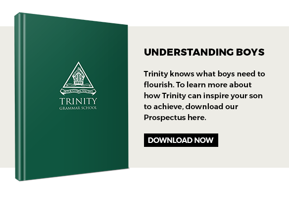 Trinity prospectus download