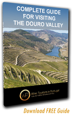 Port Wine Cellar Tour Guide Download