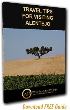Alentejo Guide Download
