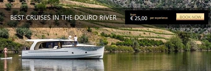best cruises in the douro river