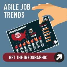 Agile Developer Infographic