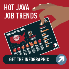 Java Developer Infographic
