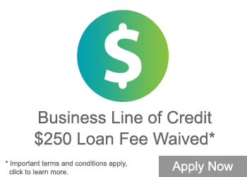 Business Line of Credit $250 Waived Loan Fee