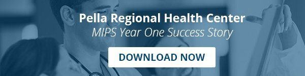 Pella Regional Business Case Download
