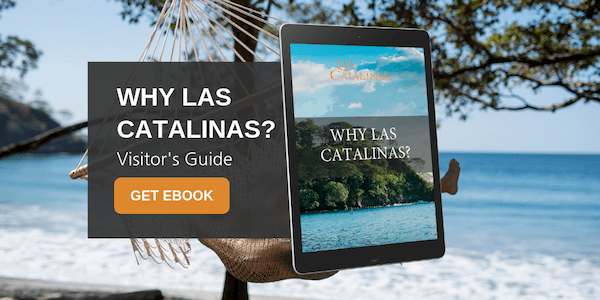 Why Las Catalinas?
