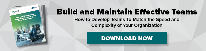 Ebook - How to build and maintain effective teams