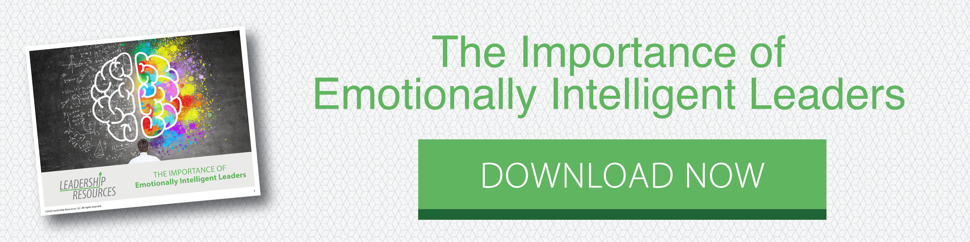 Emotionally Intelligent Leaders White paper - Download