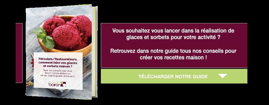 guide pour créer des glaces et sorbets maison