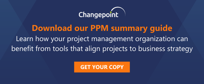 Download our PPM Summary Guide
