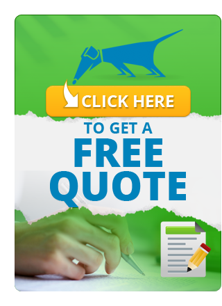 Free Background Check Quote