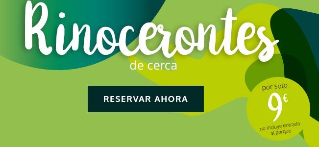 Rinocerontes. visita premium. Reserva ahora por solo 9€