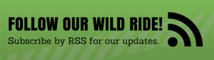 Wild Florida RSS
