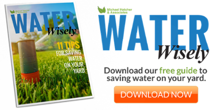 Download your water savings guide
